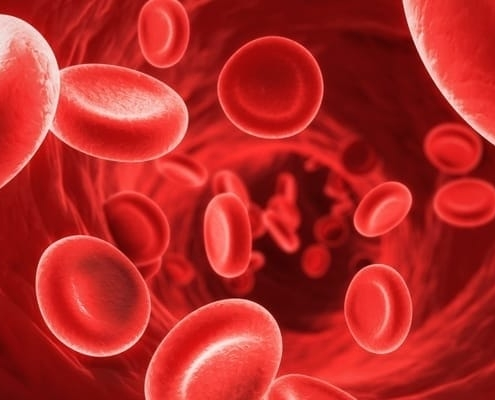 anemija malokrvnost
